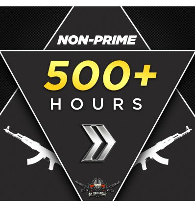 GN3-4 (NON PRIME) 500+ HOURS ACCOUNTS